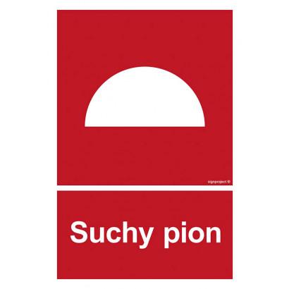 Suchy pion
