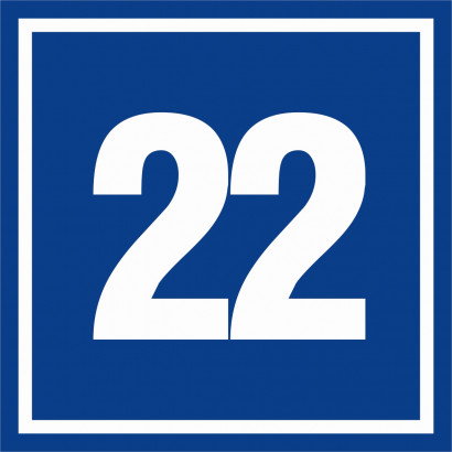 Liczba 22
