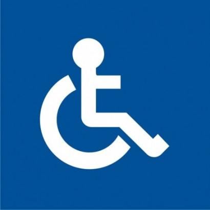 Aparat publ. przyst. do używania przez osoby niepełnosprawne