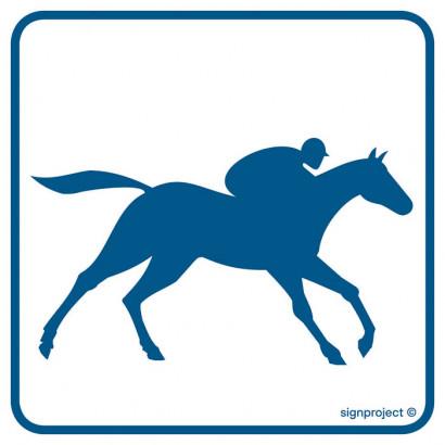 Tor wyścigów konnych