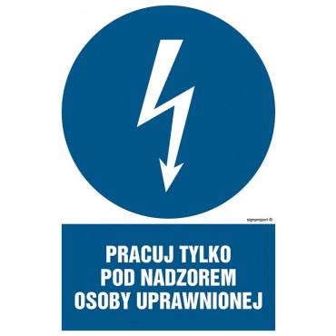 Znak - Pracuj tylko pod nadzorem osoby uprawnionej HE010