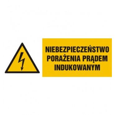 Znak - Niebezpieczeństwo porażenia prądem indukowanym HB013